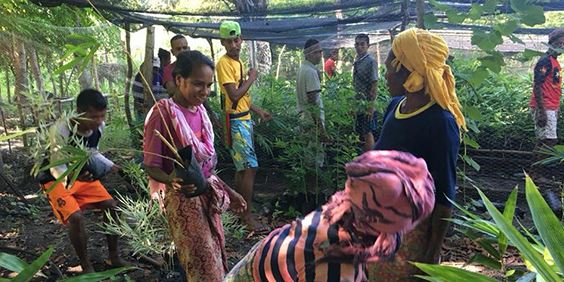 CERES Global – Permaculture in Timor-Leste